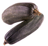 Two zucchini Royalty Free Stock Images