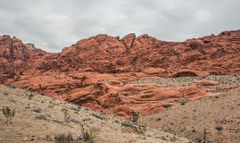 Twocoloured Rock in the Red Rock Canyon National Conservation Ar Royalty Free Stock Image