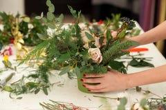Tworzyć cudowną skład bawełnę, rożki Zdjęcia Royalty Free