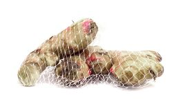 Twp ginger roots with red spots Stock Images