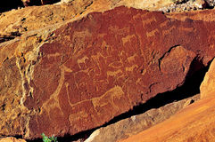 twyfelfontein för gravyrnamibia rock royaltyfria bilder