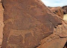 Twyfelfontein i Namibia, Afrika royaltyfria foton