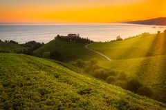 Txakoli White Wine Vineyards At Sunrise, Cantabrian Sea In The Background, Getaria, Spain Stock Photography