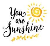 Ty jesteś światłem słonecznym Fotografia Royalty Free