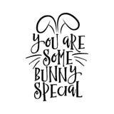 Ty jesteś niektóre królika dodatkiem specjalnym royalty ilustracja