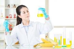 Ty masz odwaga próbować genetycznego modyfikaci jedzenie Fotografia Stock