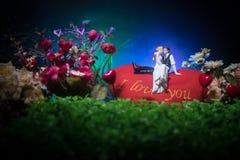 Ty poślubiasz ja? Walentynka dnia grafiki dekoracja Piękna panna młoda z sercem przeciw zmrokowi tonował tło Walentynki powitanie zdjęcia royalty free
