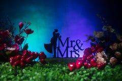 Ty poślubiasz ja? Walentynka dnia grafiki dekoracja Piękna panna młoda z sercem przeciw zmrokowi tonował tło Walentynki powitanie obrazy royalty free