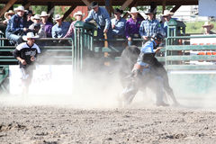 Ty Pozzobon Invitational PBR Stock Image