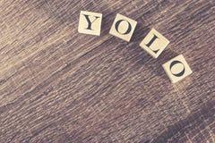 Ty Tylko Żyjesz Once wiadomość tworzącą z drewnianymi blokami (YOLO) Obrazy Stock