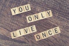 Ty Tylko Żyjesz Once wiadomość tworzącą z drewnianymi blokami (YOLO) Obraz Stock