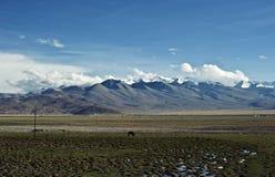 Tybet, Chiny Obraz Royalty Free