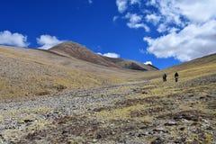 Tybet, Chiny, Czerwiec, 12, 2018 Lato krajobraz przy wysokością więcej niż 5000 metrów Na sposobie źródło Ind rzeka w T obrazy stock
