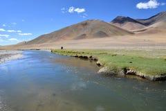 Tybet, Chiny Tybetański plateau, rzeka Ind w lecie zdjęcie royalty free