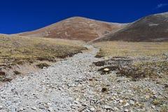 Tybet, lato krajobraz przy wysokością więcej niż 5000 metrów Na sposobie źródło Ind rzeka fotografia royalty free