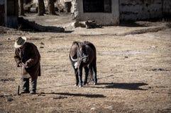 Tybetańczyka Khampa mężczyzna wiązał jego konia Zdjęcia Stock
