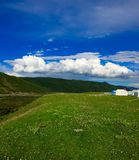 Tybetański obszar trawiasty fotografia royalty free