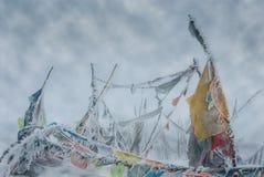 Tybetańskie Buddyjskie modlitw flaga na śnieżnym przełęczu fotografia royalty free