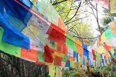 Tybetańskie modlitw flaga w Jiuzhaigou parku narodowym Sichuan Chiny zdjęcie stock