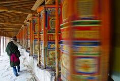 Tybetańczyk Obraz Royalty Free