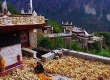 Tybetańska kobieta Zdjęcie Royalty Free