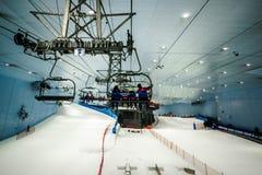 Tyck om insnöat öknen på Ski Dubai Royaltyfri Foto