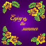 Tyck om sommaren - purpurfärgad illustration - den hibiskusblomman och typohraphyen Arkivfoton