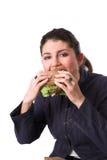 tycka om den sunda smörgåsen arkivbild