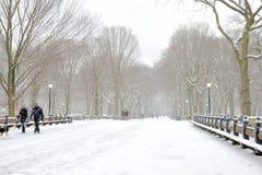 Tycka om en gå i snön Arkivfoto