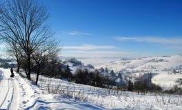 Tycka om en underbar vinterdag Royaltyfria Foton