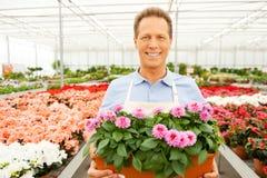 Tycka om hans arbete med växter Arkivfoto
