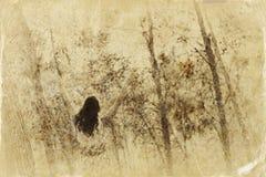 tycka om naturkvinnan Skönhetflickaställning utomhus med lyftta armar retro filtrerad bild för fotostil för fall gammal town Arkivbild