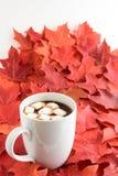 Tycka om nedgången med en kopp av varm choklad Arkivfoto
