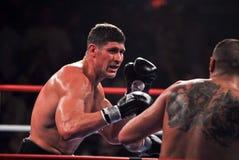 Tye coloca al boxeador pesado foto de archivo libre de regalías