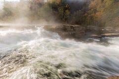 Tygart-Flusskaskaden über Felsen am Tal fällt Nationalpark Stockfotografie