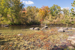 The Tygart River , West Virginia. Foliage colors Royalty Free Stock Photography