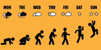 Tygodniowa życie zawodowe ewolucja Zdjęcia Stock