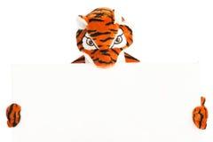 Tygrys Z puste miejsce znakiem Obrazy Royalty Free