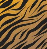 Tygrysa deseniowy wektorowy tło Zdjęcia Royalty Free