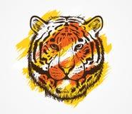 Tygrysa Kierowniczy Kolorowy Obrazy Stock