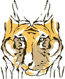 Tygrysi abstrakcjonistyczny zwierzęcy projekta projekt Fotografia Royalty Free
