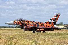 Tygrysi Eurofighter Obrazy Stock