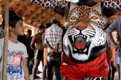 Tygrysi tana korowód Zdjęcia Royalty Free
