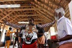 Tygrysi tana korowód Zdjęcie Royalty Free