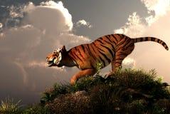 Tygrysi wzgórze ilustracji