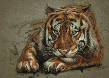 Tygrysia drapieżnik akwareli obrazu zwierząt tła tekstura ilustracji