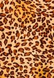 Tygrysia druk tkanina Zdjęcie Royalty Free