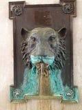 Tygrysia fontanna Obrazy Stock