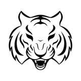 Tygrysia ikona na białym tle Tygrysi loga szablon, Fotografia Stock