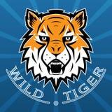 Tygrysia logo drużyny symbolu sporta maskotki ikona Odizolowywająca Fotografia Royalty Free
